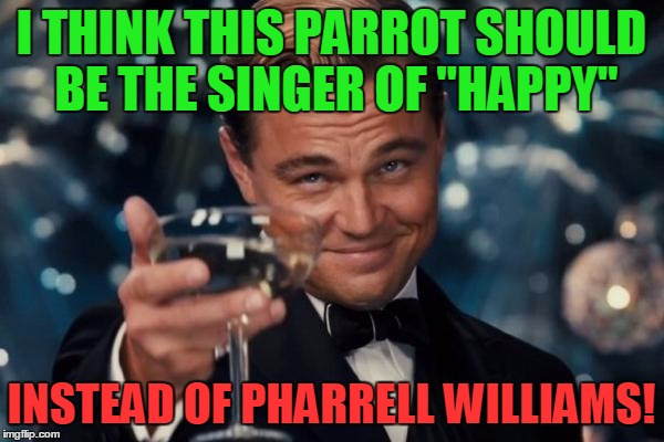 "Leonardo Dicaprio Cheers Meme | I THINK THIS PARROT SHOULD BE THE SINGER OF ""HAPPY"" INSTEAD OF PHARRELL WILLIAMS! 