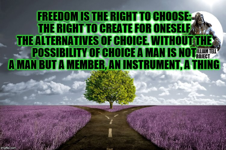 meadow choice | FREEDOM IS THE RIGHT TO CHOOSE: THE RIGHT TO CREATE FOR ONESELF THE ALTERNATIVES OF CHOICE. WITHOUT THE POSSIBILITY OF CHOICE A MAN IS NOT A | image tagged in meadow choice | made w/ Imgflip meme maker