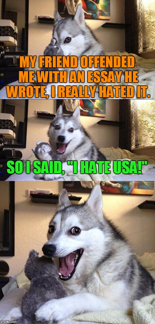 "Bad Pun Dog | MY FRIEND OFFENDED ME WITH AN ESSAY HE WROTE, I REALLY HATED IT. SO I SAID, ""I HATE USA!"" 
