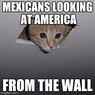 Ceiling Cat Meme |  MEXICANS LOOKING AT AMERICA; FROM THE WALL | image tagged in memes,ceiling cat | made w/ Imgflip meme maker