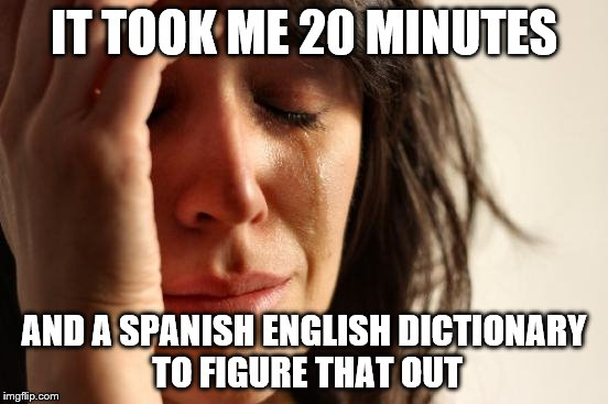 First World Problems Meme | IT TOOK ME 20 MINUTES AND A SPANISH ENGLISH DICTIONARY TO FIGURE THAT OUT | image tagged in memes,first world problems | made w/ Imgflip meme maker