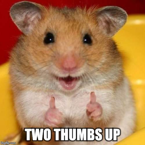 Two Thumbs Up | TWO THUMBS UP | image tagged in two thumbs up | made w/ Imgflip meme maker