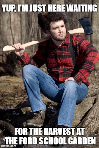 LOST IN LOCATION TRANSLATION | YUP, I'M JUST HERE WAITING FOR THE HARVEST AT THE FORD SCHOOL GARDEN | image tagged in memes,solemn lumberjack,lost | made w/ Imgflip meme maker