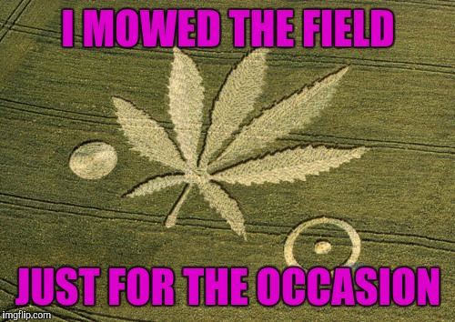 Marijuana Crop Circle | I MOWED THE FIELD JUST FOR THE OCCASION | image tagged in marijuana crop circle | made w/ Imgflip meme maker