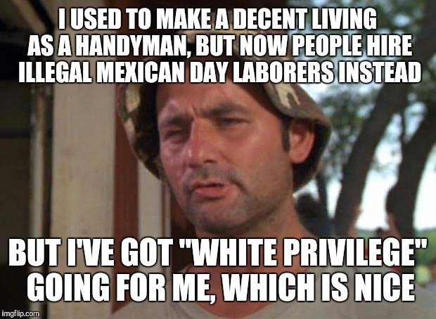 "So I Got That Goin For Me Which Is Nice Meme |  I USED TO MAKE A DECENT LIVING AS A HANDYMAN, BUT NOW PEOPLE HIRE ILLEGAL MEXICAN DAY LABORERS INSTEAD; BUT I'VE GOT ""WHITE PRIVILEGE"" GOING FOR ME, WHICH IS NICE 