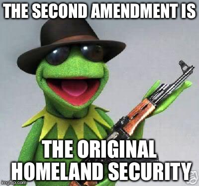 Homeland Security | THE SECOND AMENDMENT IS THE ORIGINAL HOMELAND SECURITY | image tagged in kermit-gun,homeland security,gun control,guns,memes | made w/ Imgflip meme maker