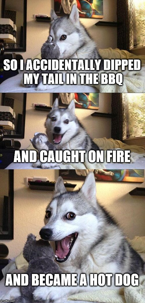 Bad Pun Dog Meme | SO I ACCIDENTALLY DIPPED MY TAIL IN THE BBQ AND CAUGHT ON FIRE AND BECAME A HOT DOG | image tagged in memes,bad pun dog | made w/ Imgflip meme maker