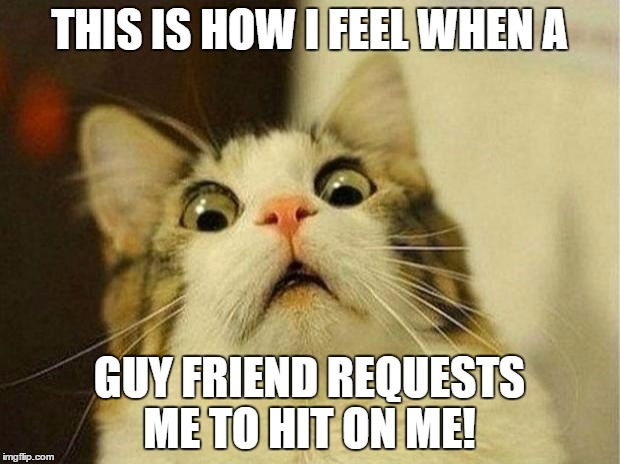 Scared Cat |  THIS IS HOW I FEEL WHEN A; GUY FRIEND REQUESTS ME TO HIT ON ME! | image tagged in memes,scared cat | made w/ Imgflip meme maker