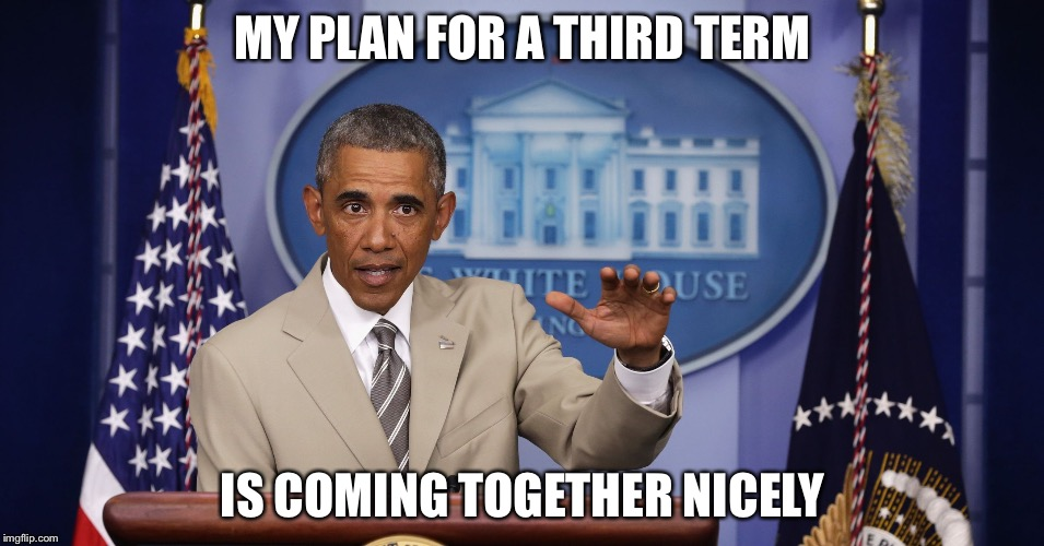 Too much BS | MY PLAN FOR A THIRD TERM IS COMING TOGETHER NICELY | image tagged in too much bs | made w/ Imgflip meme maker