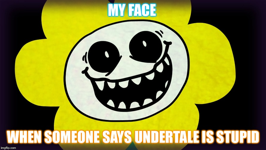 Undertale | MY FACE WHEN SOMEONE SAYS UNDERTALE IS STUPID | image tagged in undertale | made w/ Imgflip meme maker