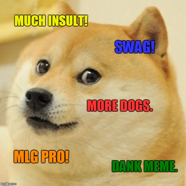 Doge Meme | MUCH INSULT! SWAG! MORE DOGS. MLG PRO! DANK MEME. | image tagged in memes,doge | made w/ Imgflip meme maker
