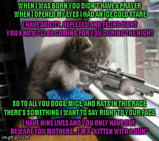 "These are a few verses from a short poem I wrote about 9 years ago called ""Kitten With A Gun""."
