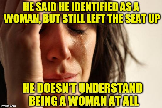 First World Problems, They Just Keep Coming | HE SAID HE IDENTIFIED AS A WOMAN, BUT STILL LEFT THE SEAT UP HE DOESN'T UNDERSTAND BEING A WOMAN AT ALL | image tagged in memes,first world problems | made w/ Imgflip meme maker