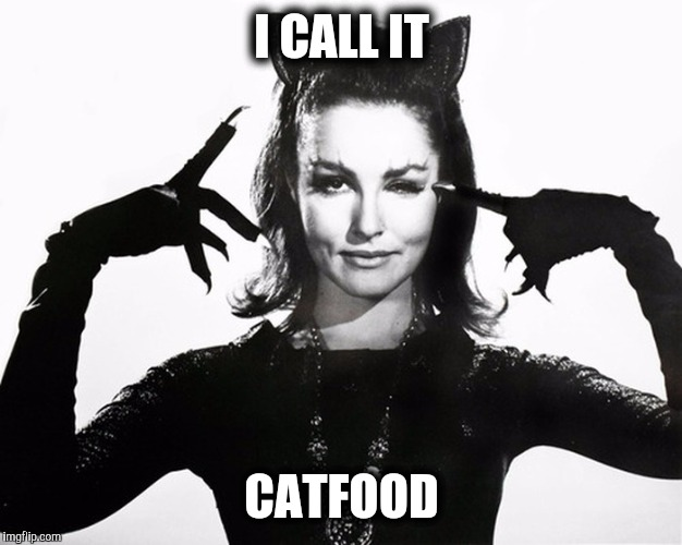 I CALL IT CATFOOD | made w/ Imgflip meme maker