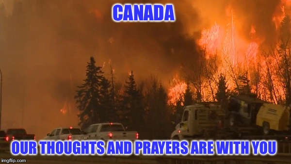 FT MCMURRAY WILDFIRE | CANADA OUR THOUGHTS AND PRAYERS ARE WITH YOU | image tagged in meme,forest fire | made w/ Imgflip meme maker