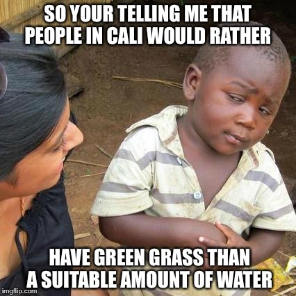 The People in Cali  | SO YOUR TELLING ME THAT PEOPLE IN CALI WOULD RATHER HAVE GREEN GRASS THAN A SUITABLE AMOUNT OF WATER | image tagged in memes,third world skeptical kid,california,california memes | made w/ Imgflip meme maker