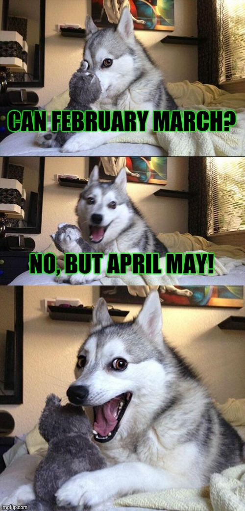 Bad Pun Dog Meme | CAN FEBRUARY MARCH? NO, BUT APRIL MAY! | image tagged in memes,bad pun dog | made w/ Imgflip meme maker