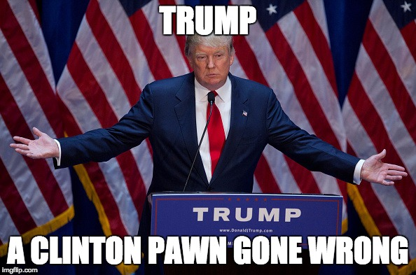 Donald Trump | TRUMP A CLINTON PAWN GONE WRONG | image tagged in donald trump | made w/ Imgflip meme maker