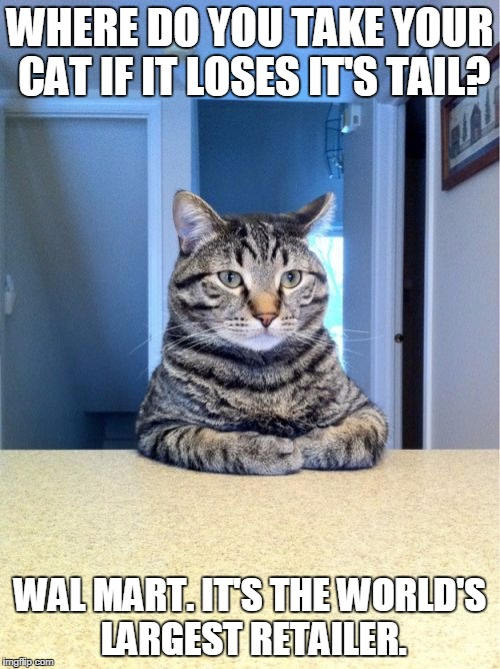 Take A Seat Cat Meme | WHERE DO YOU TAKE YOUR CAT IF IT LOSES IT'S TAIL? WAL MART. IT'S THE WORLD'S LARGEST RETAILER. | image tagged in memes,take a seat cat | made w/ Imgflip meme maker