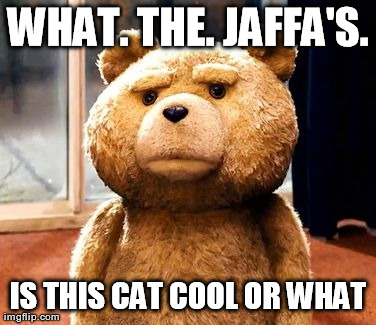 TED Meme | WHAT. THE. JAFFA'S. IS THIS CAT COOL OR WHAT | image tagged in memes,ted | made w/ Imgflip meme maker