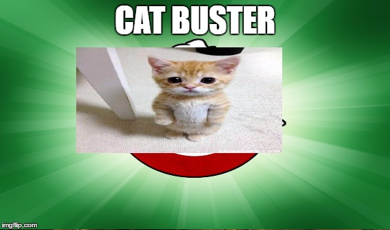 CAT BUSTER | made w/ Imgflip meme maker