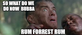 SO WHAT DO WE DO NOW  BUBBA RUM FORREST RUM | made w/ Imgflip meme maker