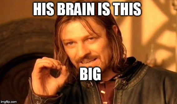 One Does Not Simply Meme | HIS BRAIN IS THIS BIG | image tagged in memes,one does not simply | made w/ Imgflip meme maker
