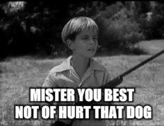MISTER YOU BEST NOT OF HURT THAT DOG | made w/ Imgflip meme maker