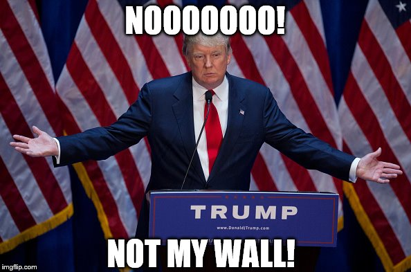 Trump Bruh | NOOOOOOO! NOT MY WALL! | image tagged in trump bruh | made w/ Imgflip meme maker
