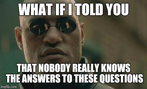 Matrix Morpheus Meme | WHAT IF I TOLD YOU THAT NOBODY REALLY KNOWS THE ANSWERS TO THESE QUESTIONS | image tagged in memes,matrix morpheus | made w/ Imgflip meme maker