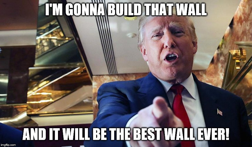Trump Burn | I'M GONNA BUILD THAT WALL AND IT WILL BE THE BEST WALL EVER! | image tagged in trump burn | made w/ Imgflip meme maker