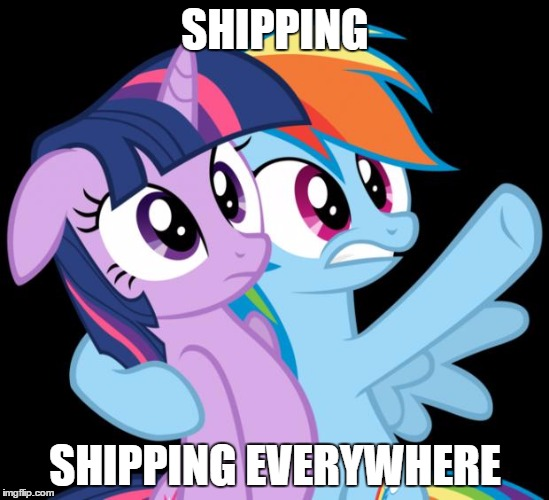 shipping everywhere | SHIPPING SHIPPING EVERYWHERE | image tagged in rainbow dash everywhere,shipping,twilight sparkle,rainbow dash,memes | made w/ Imgflip meme maker
