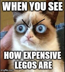 Grumpy Cat Shocked | WHEN YOU SEE HOW EXPENSIVE LEGOS ARE | image tagged in grumpy cat shocked | made w/ Imgflip meme maker