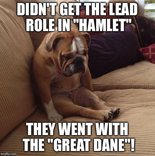 "Bulled over! |  DIDN'T GET THE LEAD ROLE IN ""HAMLET""; THEY WENT WITH THE ""GREAT DANE""! 