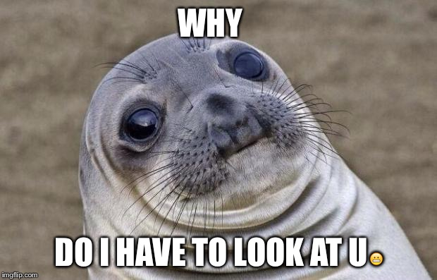 Awkward Moment Sealion Meme | WHY DO I HAVE TO LOOK AT U | image tagged in memes,awkward moment sealion | made w/ Imgflip meme maker
