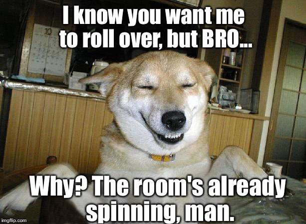 Heh. Just popped in my head... |  I know you want me to roll over, but BRO... Why? The room's already spinning, man. | image tagged in 10 dog,memes | made w/ Imgflip meme maker