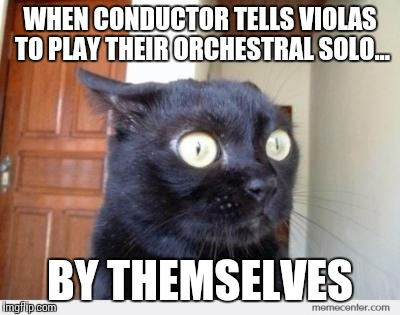 Violas on their own in orchestra | WHEN CONDUCTOR TELLS VIOLAS TO PLAY THEIR ORCHESTRAL SOLO... BY THEMSELVES | image tagged in scared cat,violas,orchestra,music,viola,thatbritishviolaguy | made w/ Imgflip meme maker