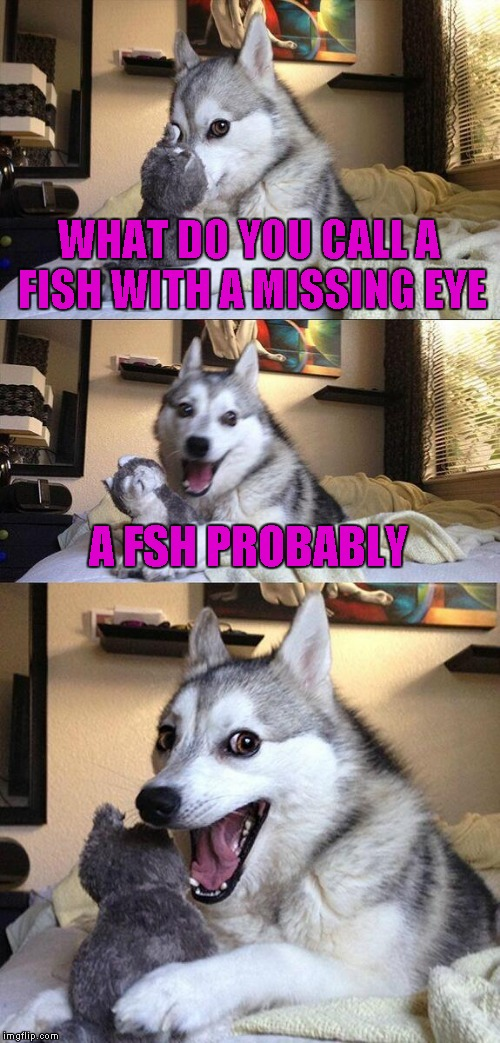 Fair warning, this pun is incredibly stupid...! | WHAT DO YOU CALL A FISH WITH A MISSING EYE A FSH PROBABLY | image tagged in memes,bad pun dog | made w/ Imgflip meme maker