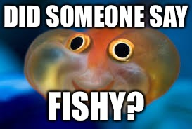 DID SOMEONE SAY FISHY? | made w/ Imgflip meme maker