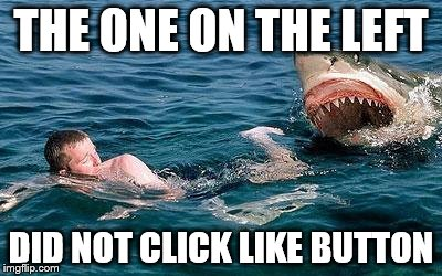 shark attack | THE ONE ON THE LEFT DID NOT CLICK LIKE BUTTON | image tagged in shark attack | made w/ Imgflip meme maker