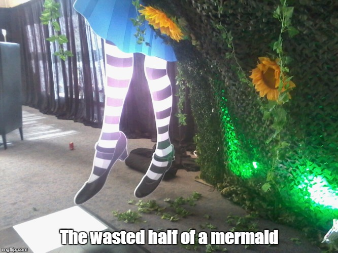 The wasted half of a mermaid | image tagged in unfair | made w/ Imgflip meme maker