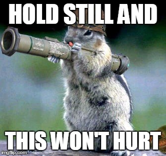 Bazooka Squirrel Meme | HOLD STILL AND THIS WON'T HURT | image tagged in memes,bazooka squirrel | made w/ Imgflip meme maker