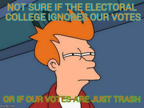 Last image title.  Lol | NOT SURE IF THE ELECTORAL COLLEGE IGNORES OUR VOTES OR IF OUR VOTES ARE JUST TRASH | image tagged in memes,futurama fry,votes,electoral college | made w/ Imgflip meme maker