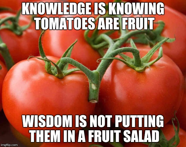 Tomato | KNOWLEDGE IS KNOWING TOMATOES ARE FRUIT WISDOM IS NOT PUTTING THEM IN A FRUIT SALAD | image tagged in tomato | made w/ Imgflip meme maker