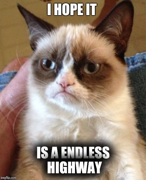 Grumpy Cat Meme | I HOPE IT IS A ENDLESS HIGHWAY | image tagged in memes,grumpy cat | made w/ Imgflip meme maker