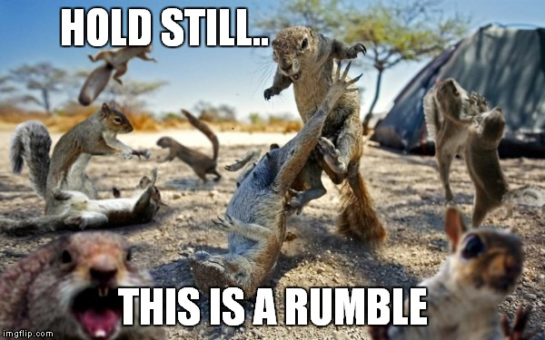 HOLD STILL.. THIS IS A RUMBLE | made w/ Imgflip meme maker