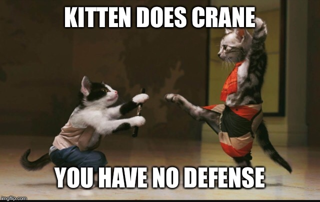 KITTEN DOES CRANE YOU HAVE NO DEFENSE | made w/ Imgflip meme maker