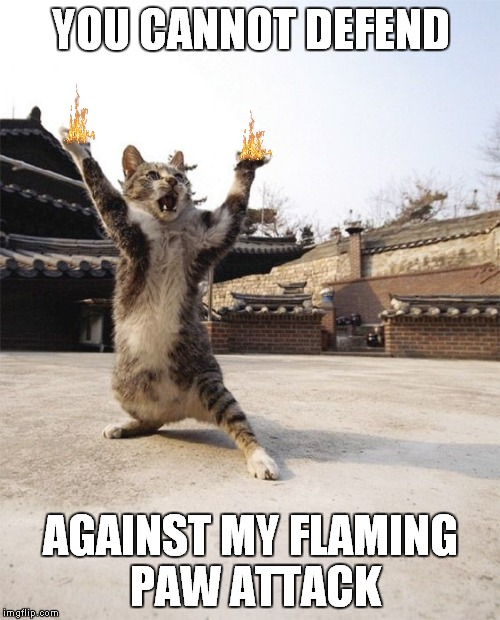 YOU CANNOT DEFEND AGAINST MY FLAMING PAW ATTACK | made w/ Imgflip meme maker