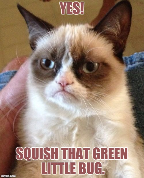 Grumpy Cat Meme | YES! SQUISH THAT GREEN LITTLE BUG. | image tagged in memes,grumpy cat | made w/ Imgflip meme maker