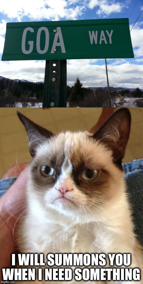 Goa Way! | I WILL SUMMONS YOU WHEN I NEED SOMETHING | image tagged in grumpy cat,in charge,go away,memes,funny | made w/ Imgflip meme maker